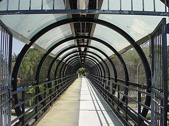 Vizcaya station - Tunnel over US-1 toward Vizcaya Museum and Gardens
