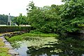 Middle River - Stafford Springs, Connecticut - DSC04150.jpg