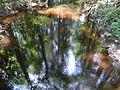 Mill Creek from Robert Simpson Nature Trail.JPG
