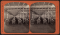 Mill no. 4. Ring twisting department, by Folsom, A. H. (Augustine H.).png