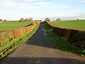Minor Road Near Nethermill - geograph.org.uk - 289437.jpg