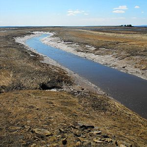 Missaguash River - Missiguash River at low tide, spring 2009. Nova Scotia to left.  In the background is the National Historic Site of Tonges Island, former home in 1676 of the Seigneur Michel de la Valliere, governor of Acadia.