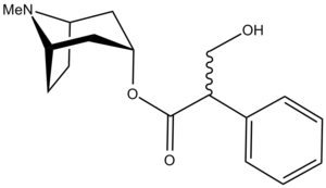 Muscarinic acetylcholine receptor - Atropine - an antagonist.