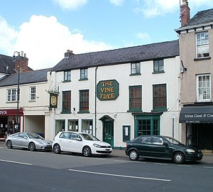 The Vine Tree - The Vine Tree, Monmouth