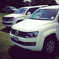 More Amaroks than you can shake an off-road course at. -vw -amarok (10861798444).jpg