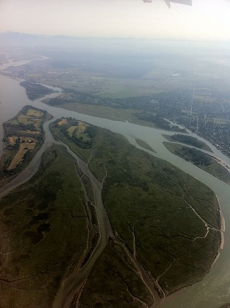 File:Mouth of the Fraser River - panoramio.jpg