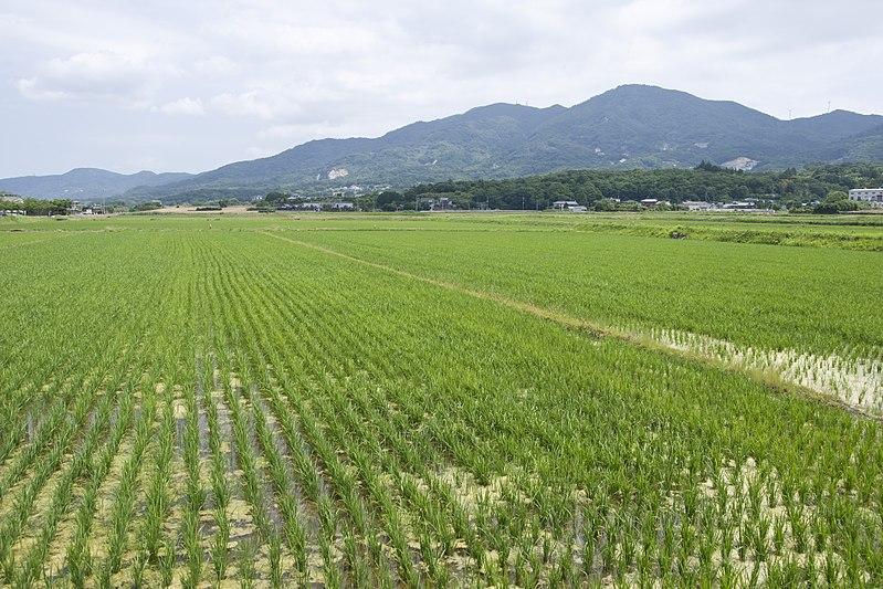 File:Mt.Kaba 12.jpg