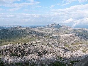 Mount Buffalo - Mount Buffalo plateau as seen from below The Horn.