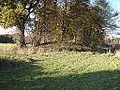 Muensing-Huegelgrab-Biber.jpg