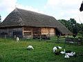 Museum of the Mazovian Countryside in Sierpc 2009 (6).jpg
