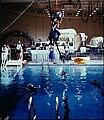 NASA Swimming Pool.jpg