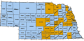 NE-counties-govt-type.png