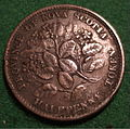 NOVA SCOTIA, VICTORIA, 1856 -HALFPENNY TOKEN a - Flickr - woody1778a.jpg