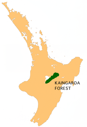 Kaingaroa Forest - Location of the Kaingaroa Forest