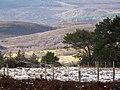 Near Blairmore - geograph.org.uk - 711009.jpg