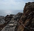 Nervi Genova 2014 1.jpg