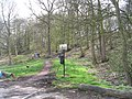 Newmillerdam Country Park - geograph.org.uk - 765769.jpg