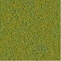 Nextgen grass.jpg