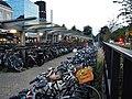 Nijmegen - panoramio (10).jpg
