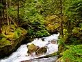 North Cascades National Park (9290012439).jpg