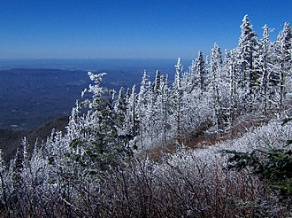Old Black (Great Smoky Mountains) - View from the western slope of Old Black, at just over 6,000 feet. Cocke County, Tennessee is below.