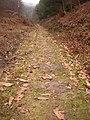 Old Tramroad - geograph.org.uk - 1103384.jpg