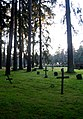 Old timey graves.jpg