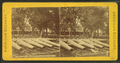 Ordnance park, Charlestown Navy Yard, from Robert N. Dennis collection of stereoscopic views 2.png