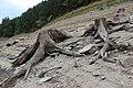 Orlická přehrada - okres Písek (008).jpg