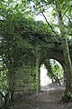 Overgrown Railway Bridge, Nr. Pateley Bridge - geograph.org.uk - 1567972.jpg