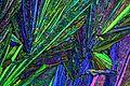 Oxalsäure in polarisiertem Licht.jpg