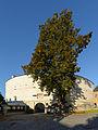 Pöggstall Schloss Barbakane 03.JPG