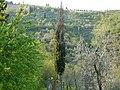 PanoramaFarne1.JPG
