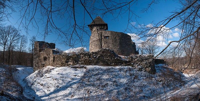 Панорама Невицького замку. Найкраща світлина Закарпатської області. Авторка фото — Катерина Байдужа, вільна ліцензія CC BY-SA 4.0