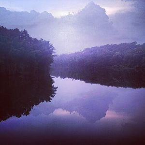 Parambikulam Tiger Reserve - View of Parambikulam Reservoir from tree-house