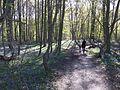 Parc Schaveys1.jpg