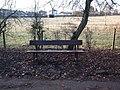 Park bench in Linn Park - geograph.org.uk - 1741178.jpg