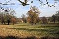 Parkland near Dedham - geograph.org.uk - 1054423.jpg