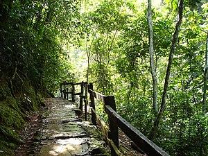 Guárico - Guatopo National Park.