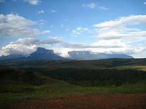 Monte Roraima National Park - Plateau and mountains