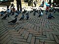 Patan Durbar Square, Mangal Bazaar 04.jpg