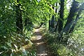 Path beside the Stour - geograph.org.uk - 1495787.jpg