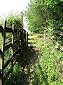 Path to Ynysyfro - geograph.org.uk - 883375.jpg