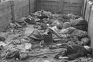 Paul Averitt - Dachau 8