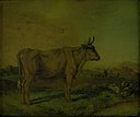 Paulus Potter - A Cow - KMSsp526 - Statens Museum for Kunst.jpg