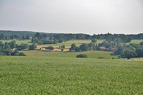 paysage de Charente Limousine