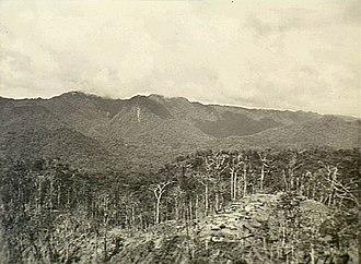 Battle of Pearl Ridge - Image: Pearl Ridge on Bougainville (AWM image OG2147)