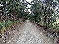 Penwortham SA 5453, Australia - panoramio (7).jpg