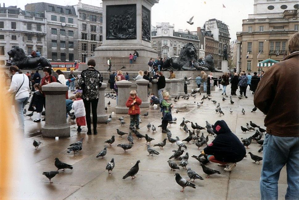 People feeding pigeons in Trafalgar Square c.1993