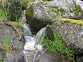 Pequeña cascada en el arroyo.jpg